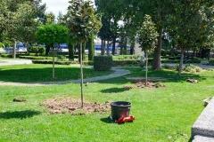 Gradski-park-3