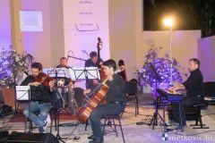 acoustic-4